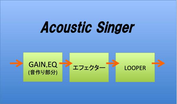 Acoustic Singer 16