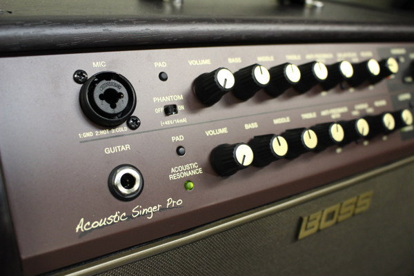 Acoustic Singer 3