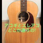 アコギ(アコースティックギター)とエレアコの違い